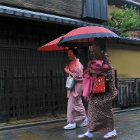 Kyoto Japan   maikos walking in the rain !